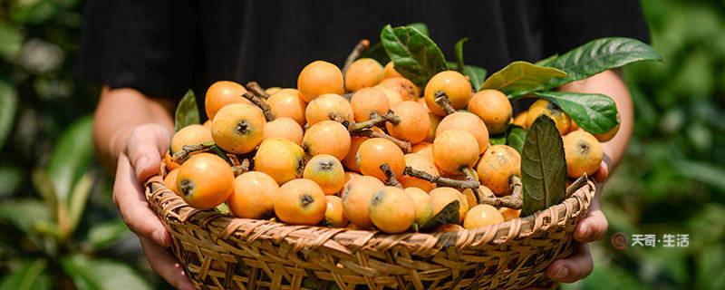 南昌特色水果
