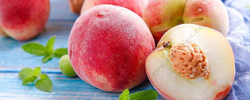 徐州特色水果