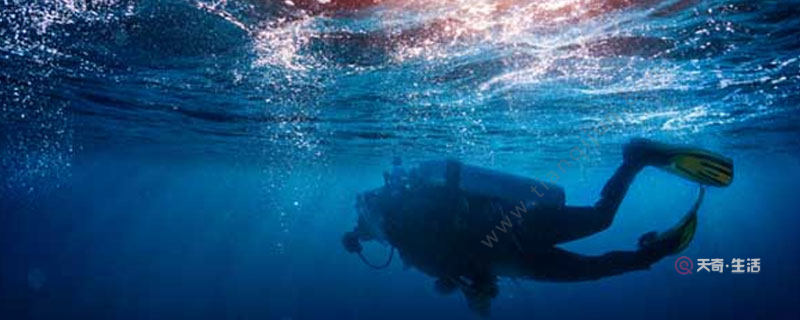潜水注意事项有哪些