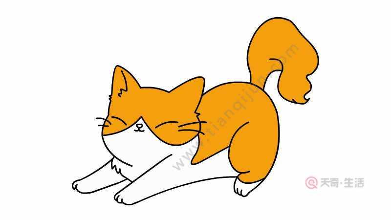小黄猫简笔画