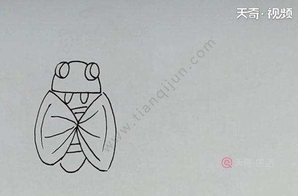 粪金龟简笔画